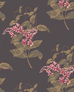 Обои COLE & SON Collection of Flowers 81-6024
