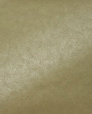 Обои Cesaro Wallcoverings Allure ce2008-10 изображение 1