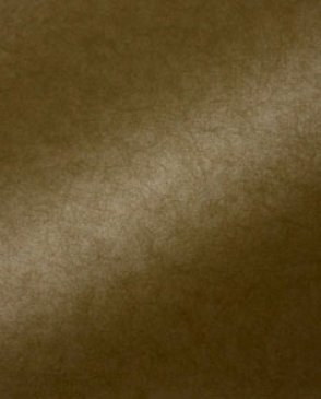 Обои Cesaro Wallcoverings Allure ce2008-12 изображение 1